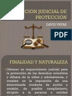 Acción Judicial de Protección