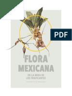 Cronica Ambiental 10 Flora