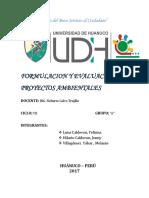 INFORME DE FORMULACIONDE PROYECTOS AMBIENTALES HUANUCO