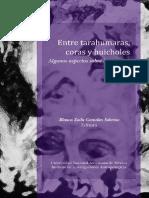 Locura en indigenas méxico.pdf
