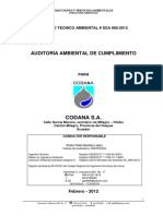 Auditoria Codana.pdf