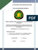 Proyectos Informe II