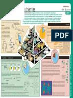 ALIMENTOS Y NUTRIENTES.pdf