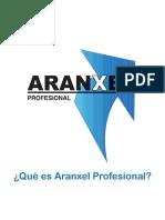 Qué es Aranxel Profesional-