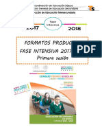 Formatos de Productos. Fase Intensiva CTE. 2017-2018