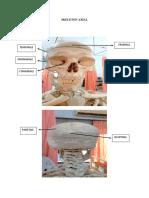 Skeleton Axial