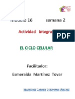 Geronimo Sanchez Beatriz Del Carmen M16S2 Elciclocelular