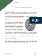 Guía de Nomenclatura Zoológica Corregida