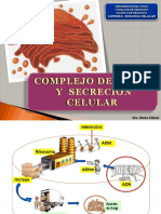 COMPLEJO DE GOLGI