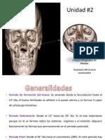 Corticotomía y Exposición Quirúrgica
