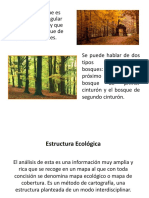 Planificacion Verde (1)