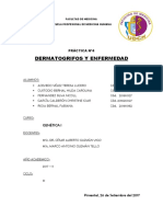Practica Nº 4 Dermatoglifos