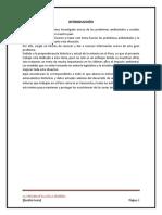 TRABAJO MINERIA EDITADO.docx