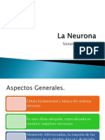 La Neurona.pptx
