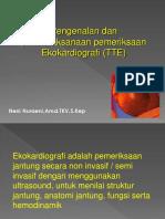 Ekokardiografi Standar Neni