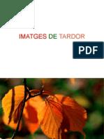 Presentació Imatges Tardor UD2