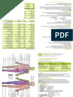 Vouwkaartje Neurologie