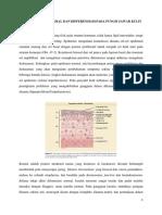 Proliferasi Epidermal Dan Differensiasi Pada Fungsi Barier Kulit