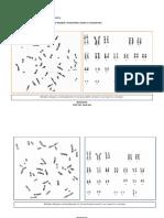 Aula_Prática_MONTAGEM_DE_CARIÓTIPOS_II.pdf