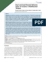 Evidence of Goal Directed Behavior Follow DevaluationOfCcaine RelpaseInterpretation