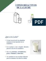 Principios Bioactivos de La Leche