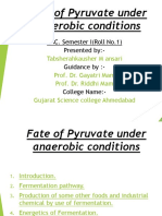Fate of Pyruvate Under Anaerobic Condition