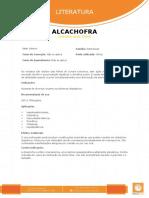 Alcachofra_1