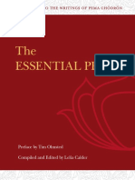 The Essential Pema Study Guide