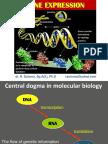 Gene Expression - Sept 2012