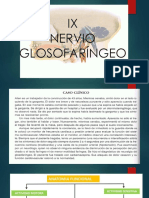 Nervio IX -Cubas