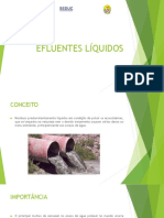 Ges. Res. Efluentes Liquidos