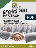 Fundamentos de la Estructuración de las Asociaciones Público Privadas