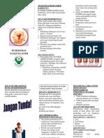 263226651-Iva-Leaflet.docx