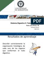 20. Sistema Digestivo2 Tubo Digestivo