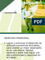 Actitudes Preventivas_2010