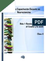 Apunte D - Nota 1 - La Discriminación y La Disminución Del Rendimiento Cognitivo