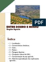 Entre Douro e Minho (1) (1)
