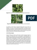 a1374s04.pdf