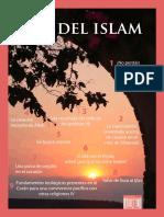 shawwal.pdf