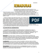 7.QUEMADURAS-imagenes.pdf