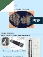 Clase1 Teoriacelular 090709145230 Phpapp01