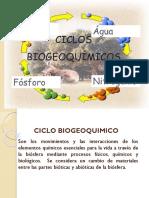 CICLO BIOGEOQUIMICO 1