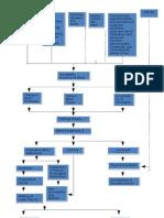 Path Physiology Final Output