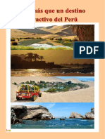 Revista de ICA
