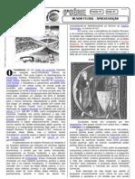 História - Pré-Vestibular Impacto - Mundo Feldal II