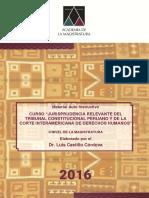 Descarga-en-PDF-«Jurisprudencia-relevante-del-TC-peruano-y-de-la-Corte-IDH»-elaborado-por-Luis-Castillo-Alva.pdf