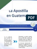 apostilla MINEX