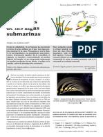 alginatos pucp.pdf