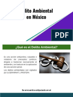 Delito Ambiental en México