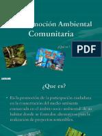 Promocion ambiental Comunitaria